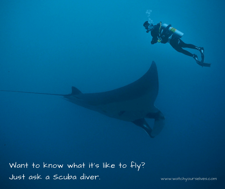 Want to fly? Maybe it's time to try Scuba