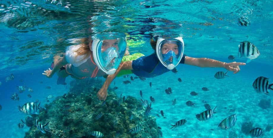 Tribord Subea Easybreath Full Face Snorkel Mask