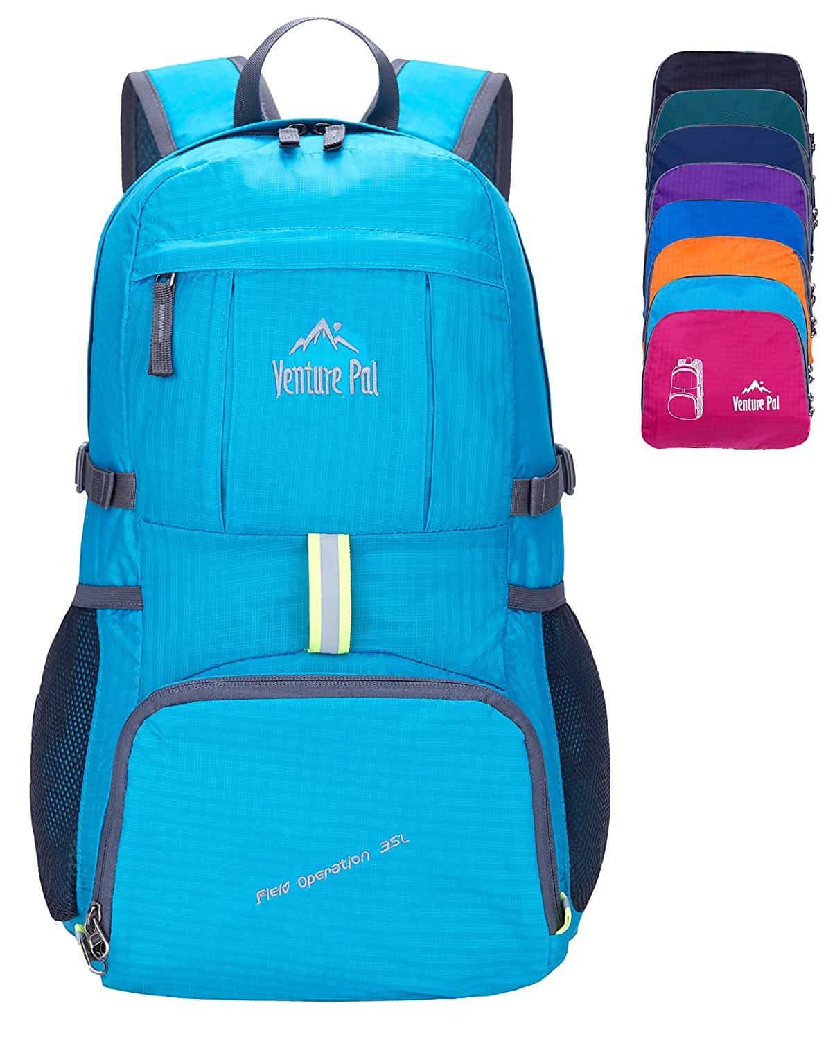 Venture Pal Multipurpose Travel Daypack Backpack Blue